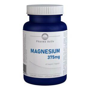 MAGNESIUM 375mg 60 kapslí